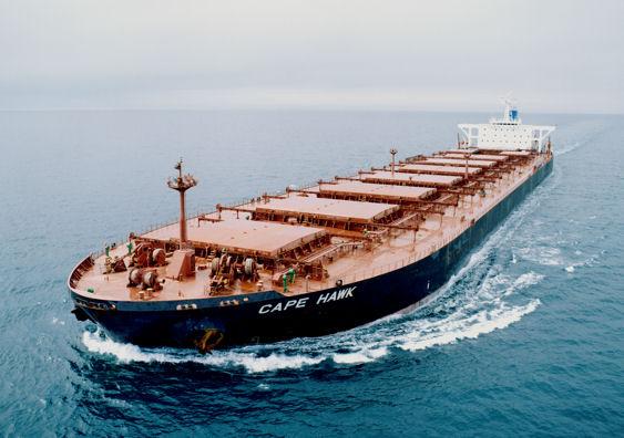 bulkship1